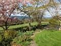 Heron Cottage garden, Hope Park Farm Holiday Cottages